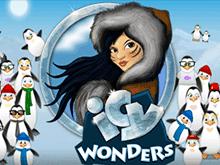 Icy Wonders